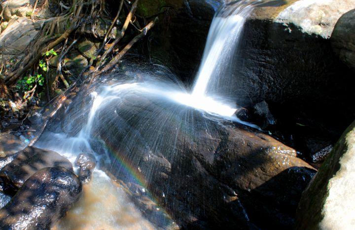 Falls - Indiartica