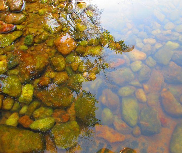Creek Glare - Indiartica