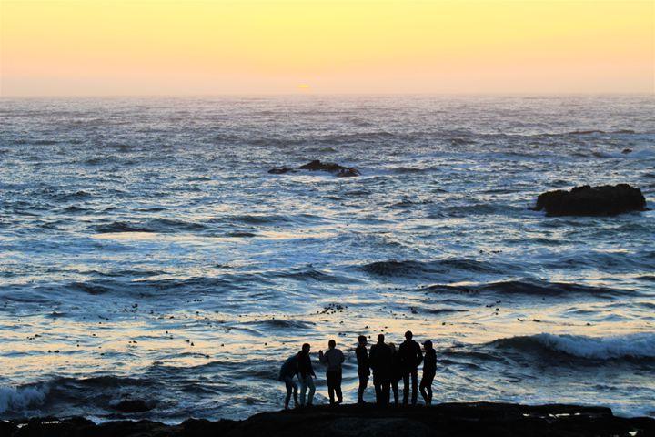 Endless Summer Revisted - Pat Hansen's Photos