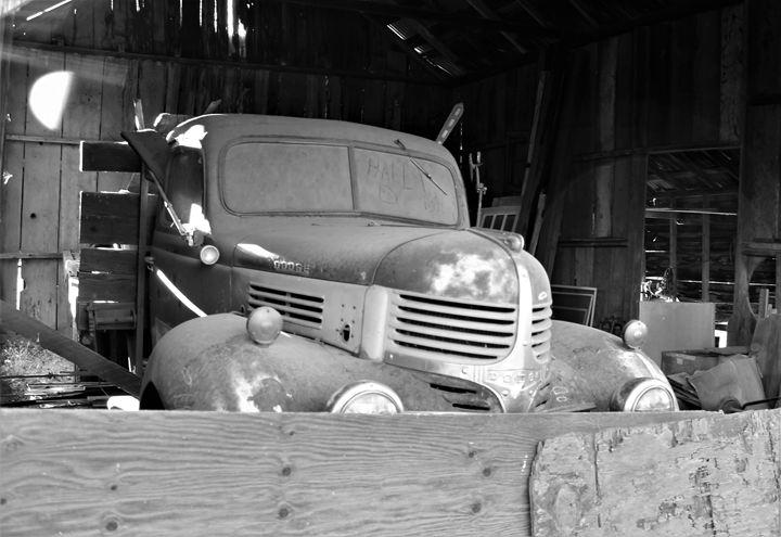 Stuck in a Barn - Pat Hansen's Photos