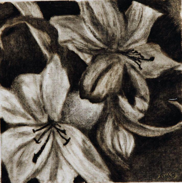 flower - Pazit Goldstein