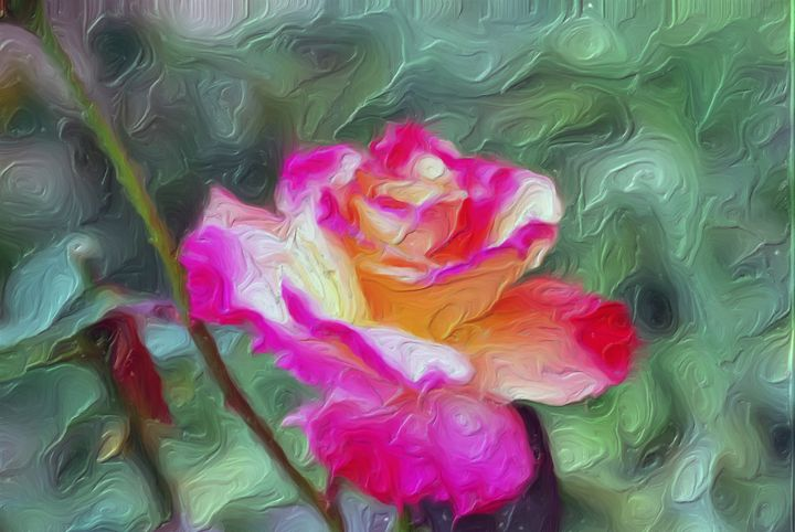 Cameo Rose - Don Wright Fine Art & Photoraphy