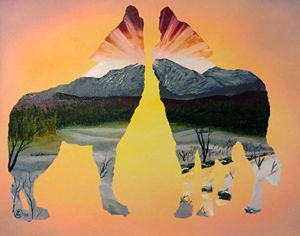 Two Wolf Howling Sunset