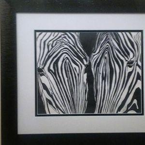 Zebra Brothers