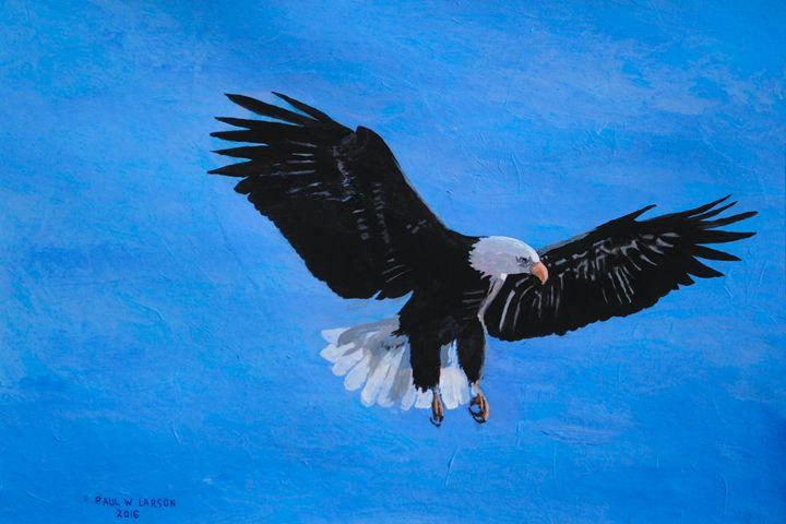 An Eagle - Paul Larson's Artwork