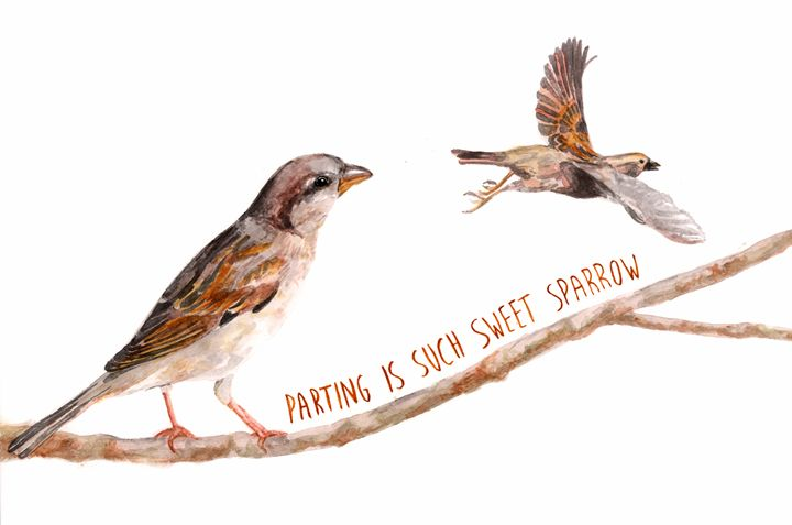 Sparrow Partings - Babbling Burble