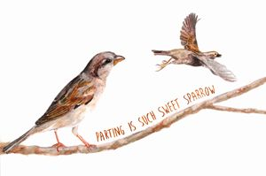 Sparrow Partings
