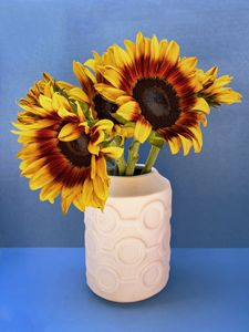 SUNFLOWERS IN CIRCLE VASE Tournesols