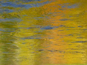 Golden Reflections by Surfclaw 2009