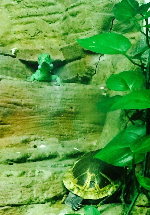 Reptile Friends - GStack