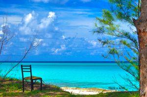 Have A Seat Bimini Bahamas