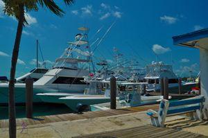 Blue Water Marina Bimini Bahamas
