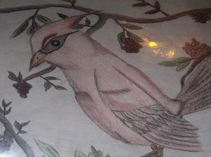 Cardinal - A. Loftis