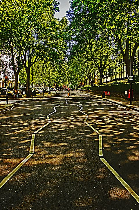 London Trees - City Streets by Paul Rausch