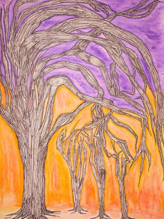 Camel Thorn Trees - Nighthawks Design