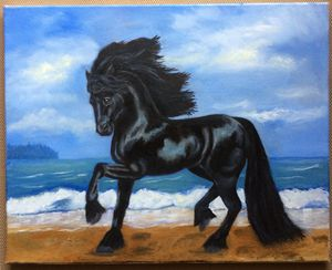 Freisian Horse by the Surf