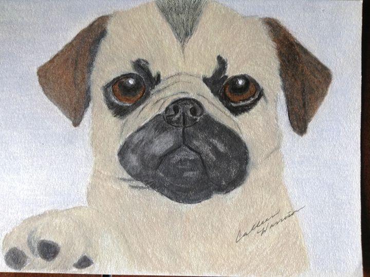 Pug puppy - Personalized pet art