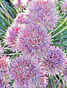 Flowers Cartooned