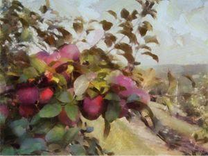 Apple Orchard Summer Haze