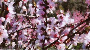 Cherry Blossom Spring - Impressionisms