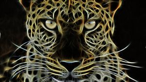 Dark Cheetah
