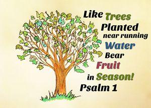 Bear Fruit in Season
