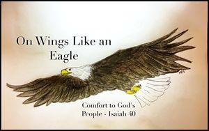 On Wings Like an Eagle