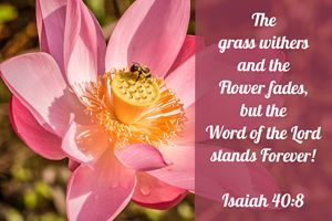 The Word of the Lord Stands Forever!