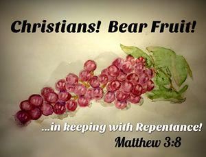 Christians! Bear Fruit!