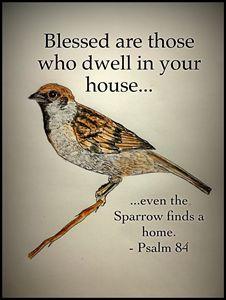 Even the Sparrow