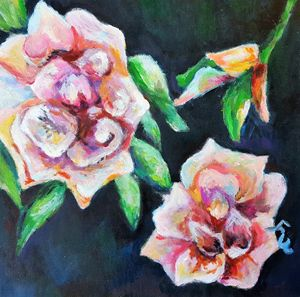 Pink Roses/Flowers