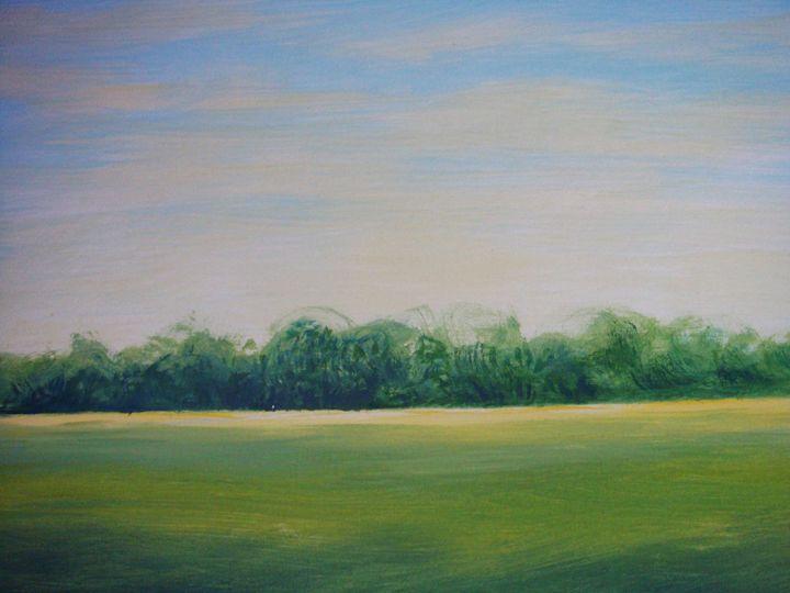 Fields And Sky - Pracha