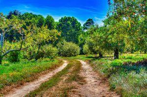Farming Road