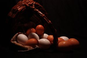 Eggless Basket