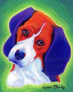 Beagle of color
