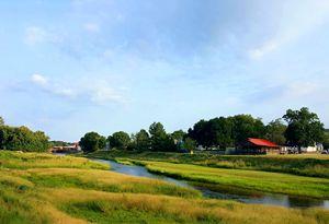 Autauga Creek Summer