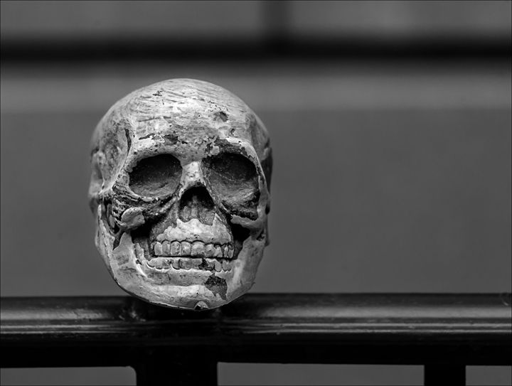 Halloween Skull - Robert Daniel Ullmann Fine Art Photography