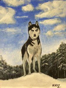 Siberian Husky - MaxZ, Painting Gallery