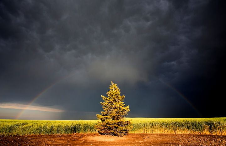 Storm Clouds Canada - Fine Art Photography