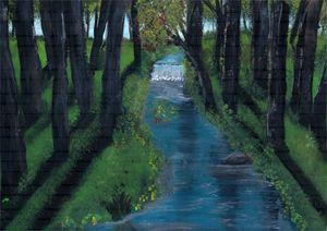 Wooded Creek