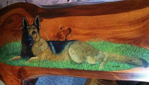 German Shepherd on Pine Coffee Table