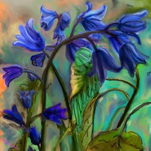 Blue bells art