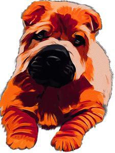 Fluffy puppy - Karen Harding Artist