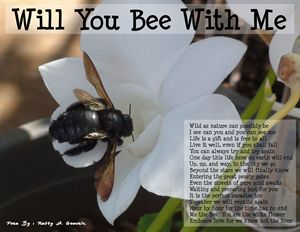 Will you bee with me