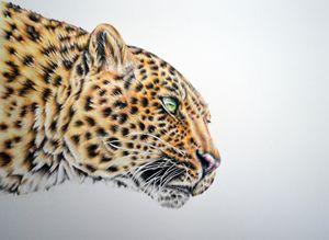 Dropping In - Natasha Boucher Original Art