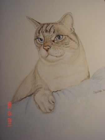 Blue Eyes - Michele L. Squibb