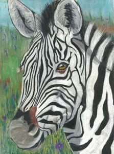 Stripes - Crys Cameron fine Art