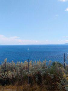 Deap blue sea