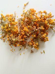 Dry yellow flowers