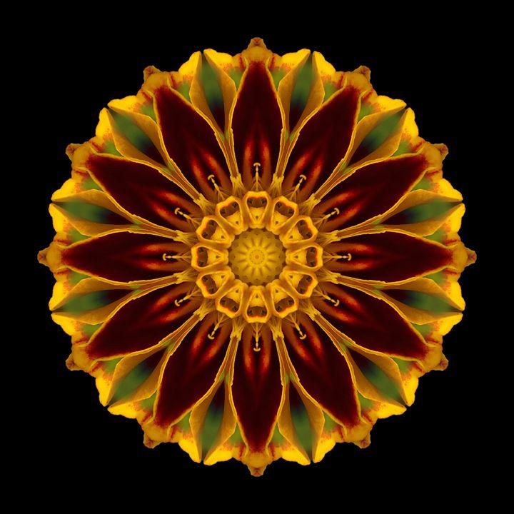 Deep Orange Marigold V - Flower Mandalas